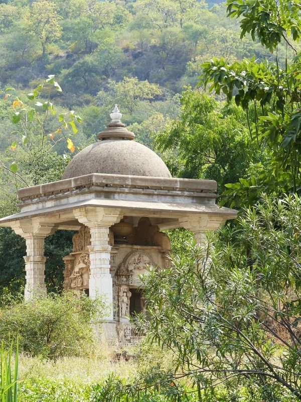 In the grounds - Ranakpur