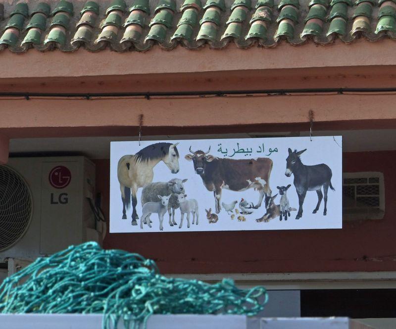Butchers shop - Ait Ourir