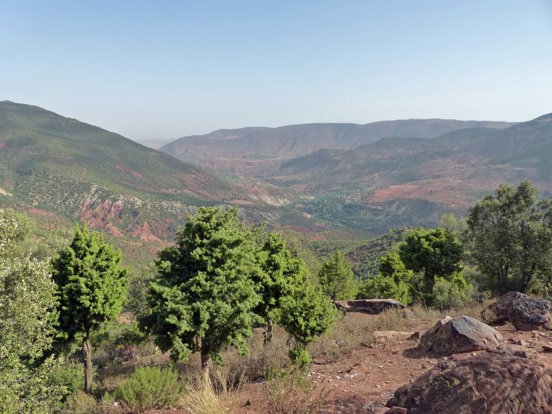 View from the terrace - Ait Barka