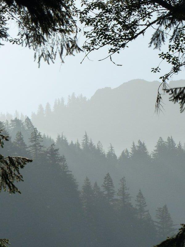 View towards Mount Rainier NP from the Copper Creek Inn