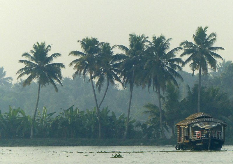 On the Kerala backwaters, early morning