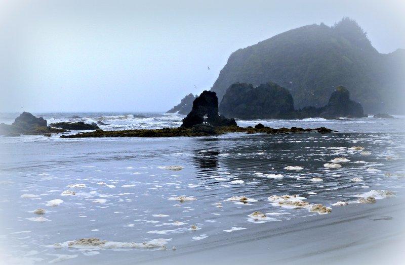Beach at Puñihuil