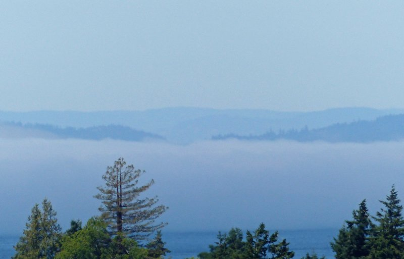 View from Cap Sante Park, Anacortes - fog rolling in