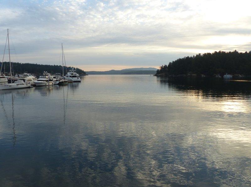 Early morning, Friday Harbor