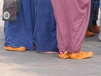 201544497516965-Tourists_in_.._Rajasthan.jpg
