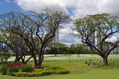 American Cemetery (21)