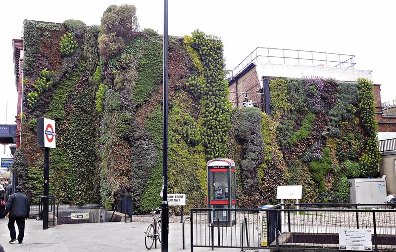 BELLSTR 4 Green Wall Marylebone Road