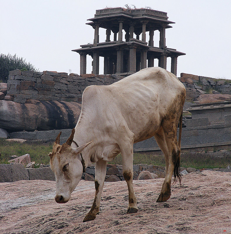 HAMPI  In an antique land