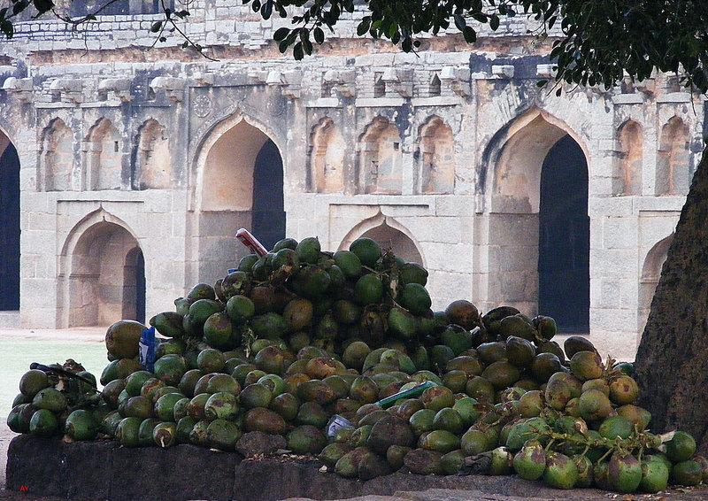 HAMPI  Coconuts near the Elephant Stables