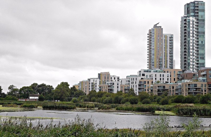 East Reservoir from Woodberry Wetlands