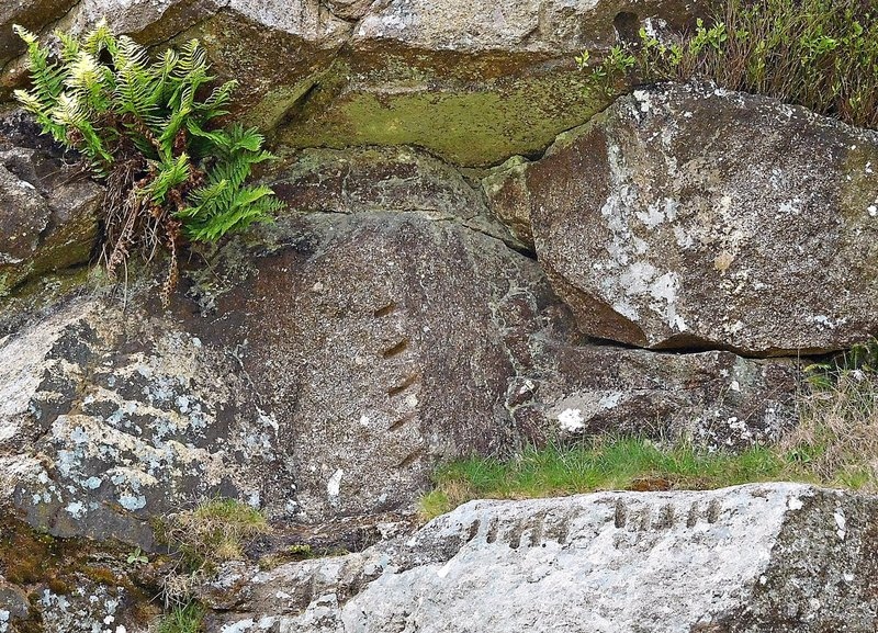 HAVASU 0h Haytor Quarry: worked stones