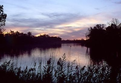 Sunset at Murray River - Mildura