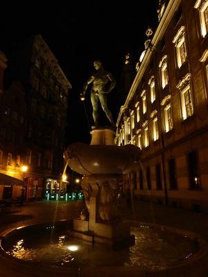 7171118-Fencer_Fountain_Wroclaw.jpg