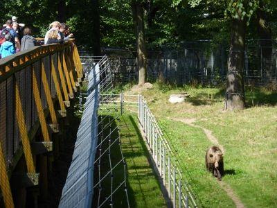 7173121-Zoo_Wroclaw.jpg