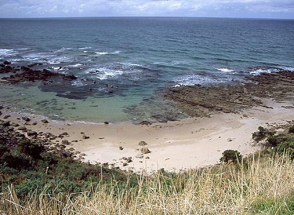 Coastline near Lorne at low tide - Lorne