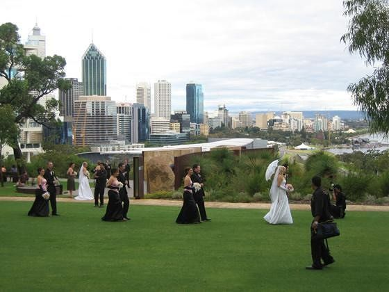 Bride Watching In Kings Park