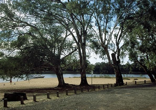 Murray beach - Mildura