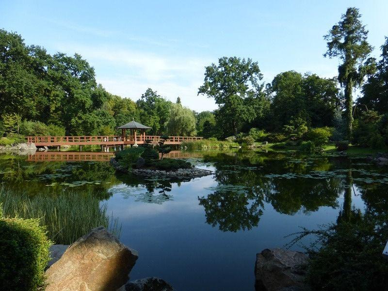 large_7176834-Japanese_Garden_Wroclaw.jpg