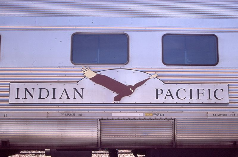 Packing Tips for Indian Pacific, Gold Kangaroo