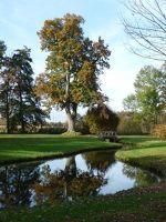 30680614657713-Autumn_Colou..rk_Rastatt.jpg