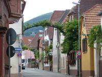 356689975823680-Wineries_in_..land_Pfalz.jpg