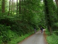 5899313-Alb_valley_bike_trail_Marxzell_.jpg