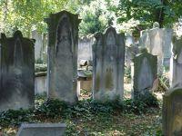 7156865-Jewish_Cemetery_Impressions_2_Wroclaw.jpg