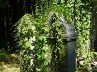 7156868-Jewish_Cemetery_Impressions_2_Wroclaw.jpg