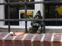 7166292-Gnomes_Gnomes_Gnomes_Wroclaw.jpg
