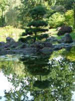 7176835-Japanese_Garden_Wroclaw.jpg