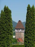 82829145072561-Storchenturm.._Gernsbach.jpg