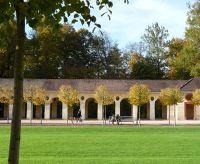 924388334657714-Autumn_Colou..rk_Rastatt.jpg