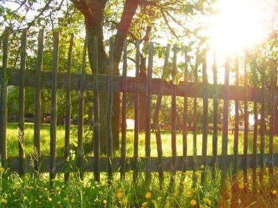 Garden fence - Chemnitz