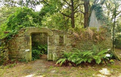 The Fern Garden at Kermoureau