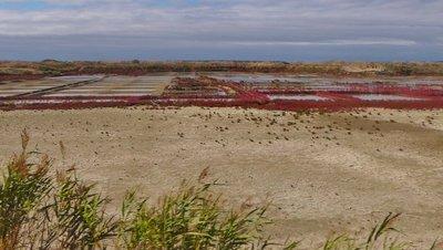 Salt Pans near Batz-sur-Mer