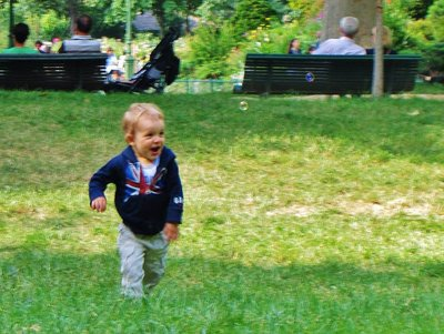 Chasing bubbles in Parc Monceau