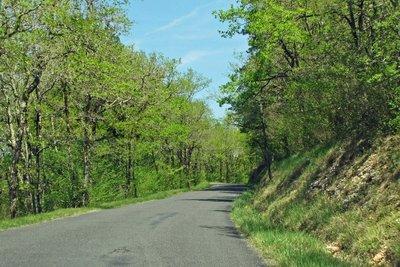 Rural road near Fleurac in the Dordogne region