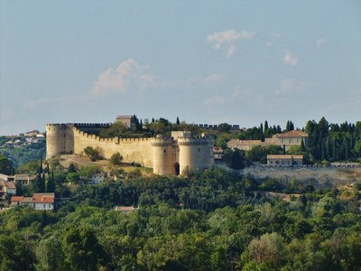 Fort St. André from the Rocher des Doms