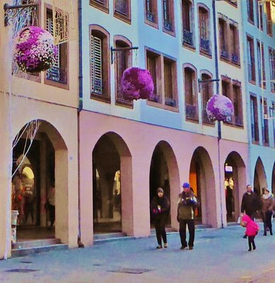 December flowers on the rue des Grandes Arcades