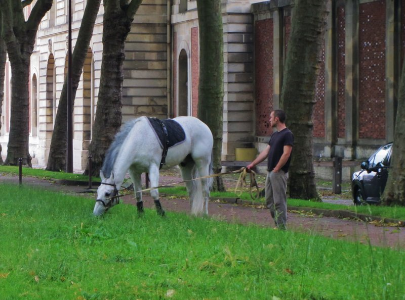 Beside the Equestrian School at Versailles