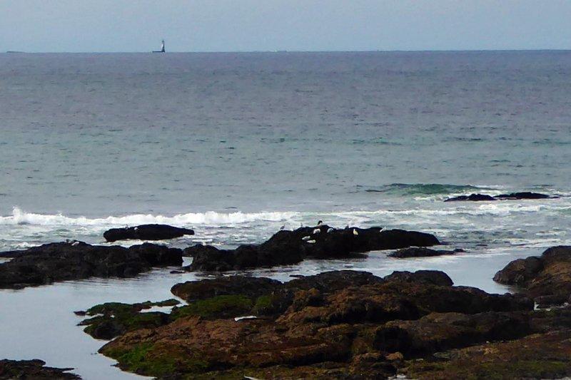 Shore near Piriac-sur-Mer