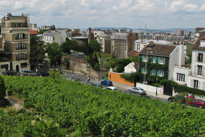 View of the Montmartre vineyard and Au Lapin Agile from the museum