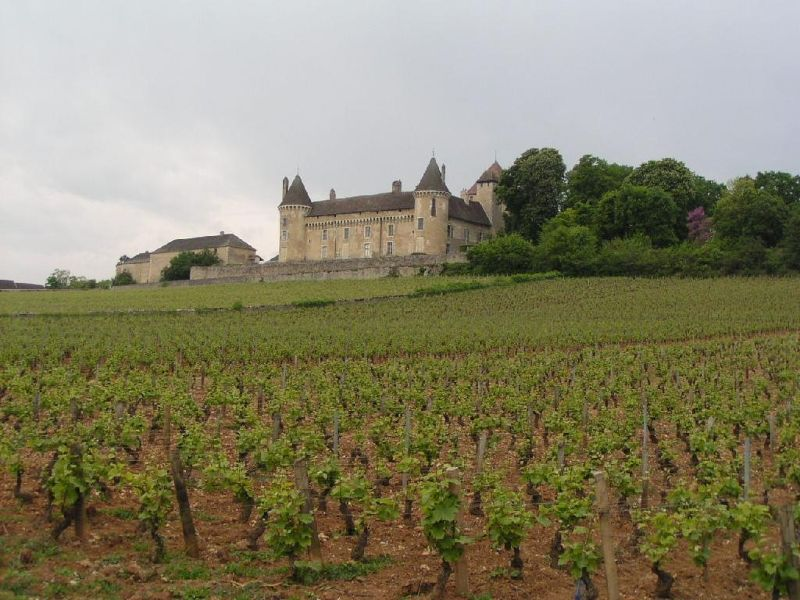 Château in Burgundy (not the Loire) near Beaune