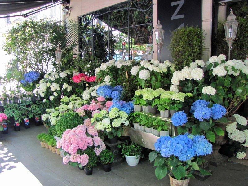Léa Florès Flower Shop at 119 rue de Grenelle in Paris