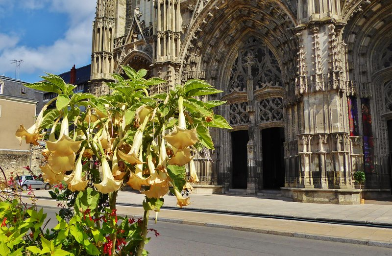 Cathedral St. Gatien in Tours