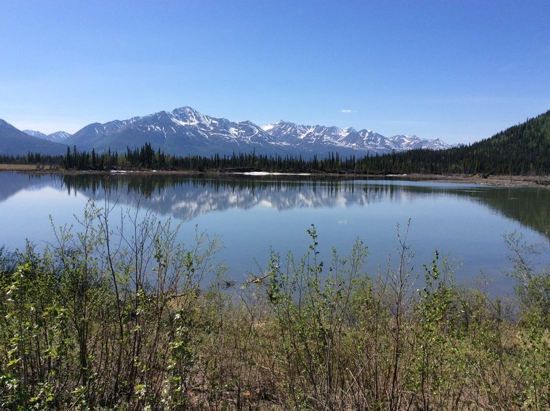 Alaska 814