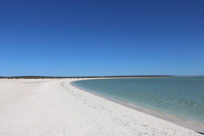 large_Shell_Beach.jpg