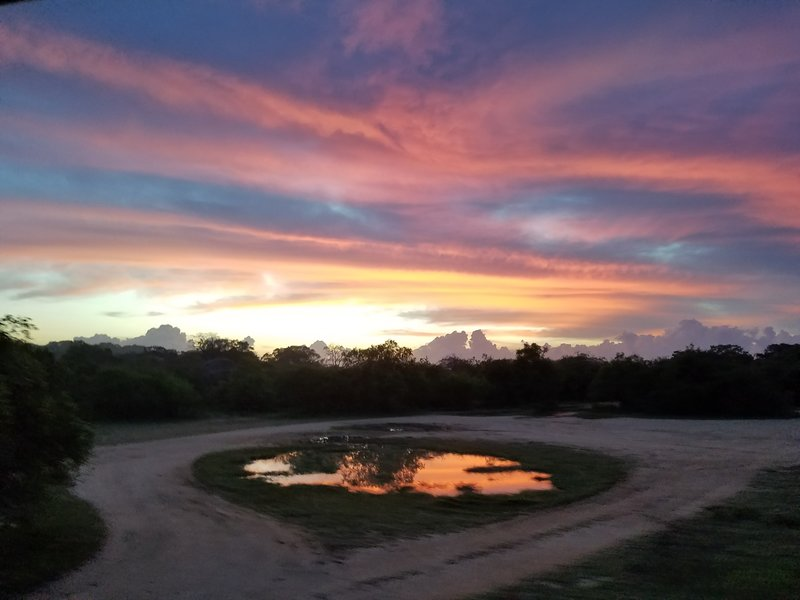 Sunrise in Yala