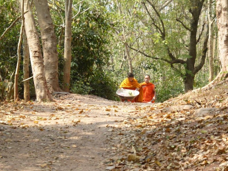 young monks carrying food