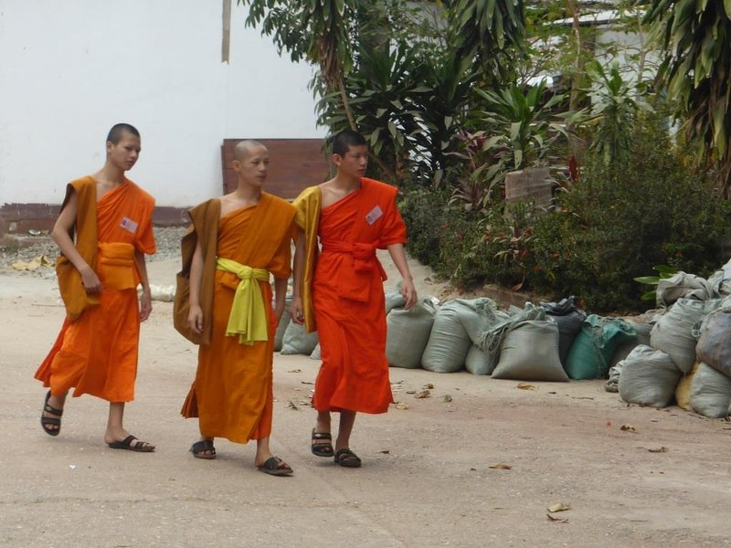 young monks are the most visible